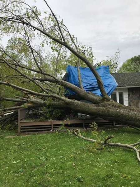 Weather Damage | Tornado Damage | Storm Damage | Fallen Tree Removal  by Green Restoration of New Haven-Shoreline