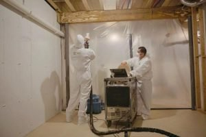 Image green-restoration-mold-remediation-300x200